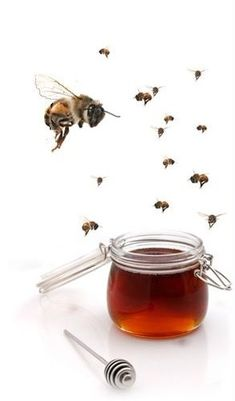 Honey Love, Busy Bee, Bees Knees, Queen Bees, Color Themes, Cottage, Save The Bees, Agriculture, Cottages