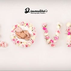 Hebrew Baby Names, Bud Flower, Backdrop Background, Digital Backdrops, Rose Buds, Newborn Photography, Photoshoot, Pink, Collection