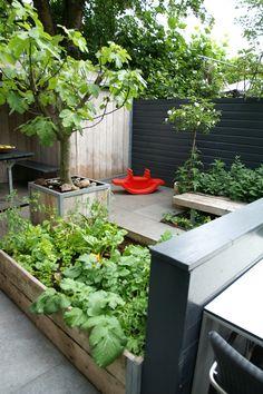 Stadstuin | Heerlijke verse groente uit eigen tuin. # steigerhout # moestuin