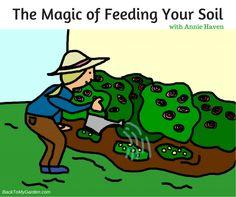 The Magic of Feeding Your Soil