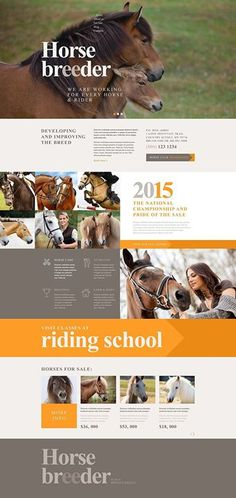 Hoof It Over To Our Awesome Horse Rescue & Equestrian Breeding WordPress Themes - Horse Breeder (theme for your WordPress site) Item Picture Wordpress Theme Design, Best Wordpress Themes, Website Design, Website Ideas, Horse Rescue, Wordpress Template, Wordpress Demo, Horse Grooming, Work Horses