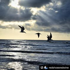 The calm after the storm.  #portaransas #portaransastex  Repost @redshoesredwine