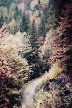 Autumn is the best season. Beautiful World, Beautiful Places, Beautiful Pictures, Beautiful Scenery, All Nature, Belleza Natural, Autumn Inspiration, Fall Season, Land Scape