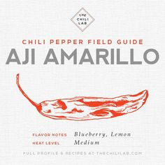The Aji Amarillo Chili Pepper | The Chili Lab