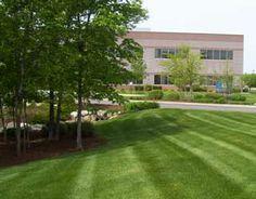 Elite Property Care: Landscaping Albany NY, Delmar NY, Slingerlands NY, Latham NY, Ballston Spa NY, Ballston Lake NY, Saratoga NY. 518-218-7301. info@epropcare.com