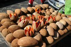 Top 5: Frutas exóticas mexicanas - Mexico News Network