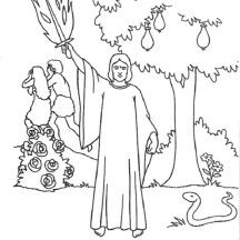 LOTS Of Bible Coloring Book Pages On This Site Garden EdenColoring