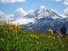 Skyline Divide — Washington Trails Association
