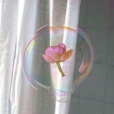 delicate things *・゜゚・*:.。..。.