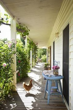 this country cottage with porch and chickens right at home