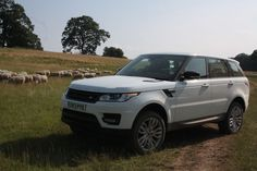 White Sports Wallpapers, Car Wallpapers, Hd Wallpaper, Range Rover Sport 2014, Amazing Cars, Awesome, Great View, Range Rovers, Explore