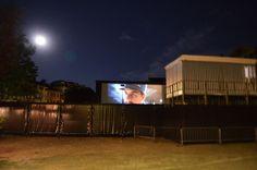 Hugo peeking over the fence at the Campo San Polo Outdoor Cinema in Venice