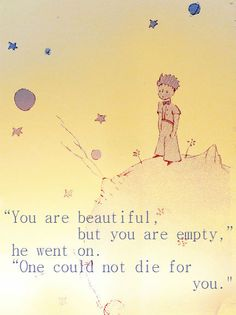 The Little Prince....being beautiful is not enough.