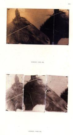 Mike and Doug Starn, Horses
