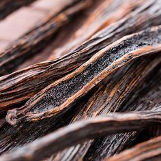 We have #Ugandan #Bourbon #Vanilla #Beans in stock.  They retail at Ksh.350/= per bean. There is free delivery for orders over Ksh.2500/=. Payment is made through our Paybill No. 137425 - Account No. NAISENYA FOODS.  We look forward to serving you.  Happy Baking!!