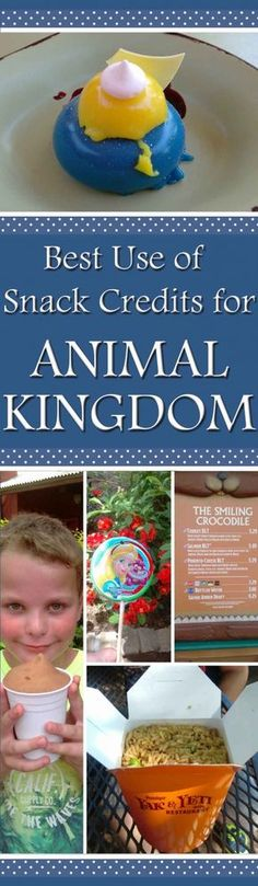 Best use of snack credits for Animal Kingdom in Walt Disney World Florida, USA. Tips and Tricks, Hints and Hacks for the Disney Dining Plan. Menus and Food pictures.