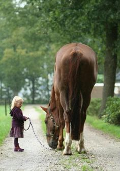 What a large horse for such a tiny little girl !!!