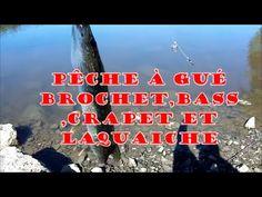LA PECHE AU GROS/pêche à gué du brochet,bass,crapet et laquaiche
