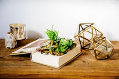 HGTV has inexpensive and easy ways to recycle household junk into unique garden planters. Succulent Planter Diy, Succulent Centerpieces, Succulents, Garden Planters, Cheap Planters, Planter Pots, Diy Upcycled Planters, Suculentas Diy, Earthy Decor