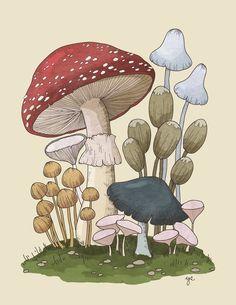 Mushroom Drawing, Mushroom Art, Botanical Drawings, Botanical Art, Arte Indie, Arte Sketchbook, Aesthetic Art, Cute Drawings, Collage Art