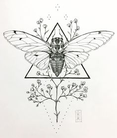 "141 Likes, 9 Comments - Emma Feld (愛真) (@aiiishin) on Instagram: ""Miii~ miii~ miii~ #cicada #insect #babiesbreath #flowers #botanical #floral #ink #illustration…"""