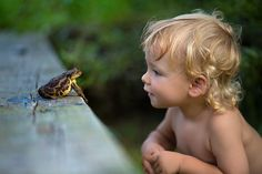Blond toddler eye-to-eye with frog. Life Around The Lily Pond