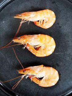 shrimps http://www.lottassachen.de/blog?page=2