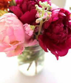 Pink Peonies from @krystalschlegel