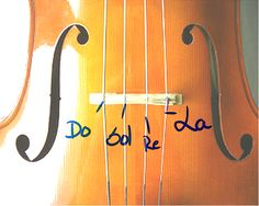 cuerdas+cello.png (600×480)