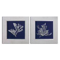 Framed Seaweed Prints from www.wellappointedhouse.com