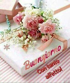 Buongiorno Italian Memes, Good Morning, Happy Birthday, Gif, Google, Frases, Happiness, Messages, Colors