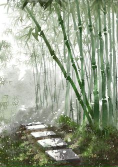 Read Three Leaf Clover Team from the story Trả Test by tientieutich (Diệp Tịch) with 258 reads. Fantasy Landscape, Landscape Art, Fantasy Art, Watercolor Landscape Paintings, Watercolor Paintings, Watercolor Japan, Bamboo Art, Bamboo Drawing, Art Asiatique