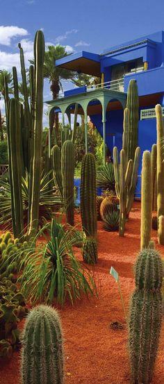 Majorelle gardens, Marrakech, Morocco | House of Beccaria~
