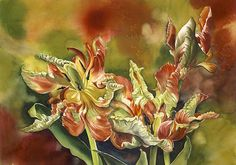 ARTFINDER: Parrot tulips with red by Alfred Ng - original watercolor painting on Arches watercolor paper, Arches Watercolor Paper, Watercolor Flowers, Watercolor Paintings, Watercolors, Tulip Painting, Parrot Tulips, Flower Art, Art Flowers, Paintings For Sale
