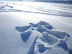 snow angel- one of the only things I like about snow! I love snow angels and just watching the snow fall. Winter Magic, Winter Snow, Winter White, Serenity Now, I Love Snow, Friends Are Like, True Friends, Snow Angels, Reasons To Smile