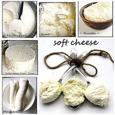 HOMEMADE cottage cheese, mascarpone, ricotta, quark and mozzarella.