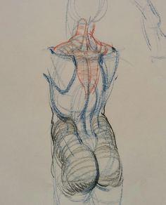 Pin by keteinporta on rh torso in 2019 anatomy drawing, body drawing, drawi Anatomy Sketches, Body Sketches, Anatomy Drawing, Anatomy Art, Male Figure Drawing, Figure Drawing Reference, Body Drawing, Life Drawing, Drawing Skills