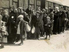 O álbum (incompleto) de fotografias de Auschwitz - PÚBLICO