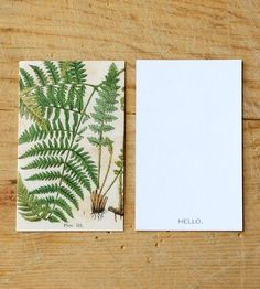 Botanical Gift Tag Set by Peter Loves Jane on Scoutmob Shoppe