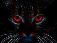 Resultado de imagen para gato arte abstracto