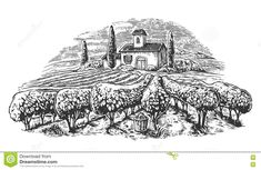 rural-landscape-villa-vineyard-fields-hills-black-white-drawn-vintage-vector-illustration-label-poster-71901800.jpg (1300×846)