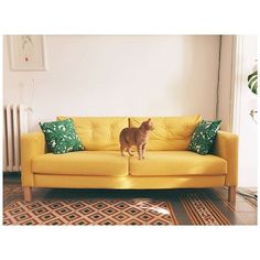 8 best ikea sofa covers images home chairs couches rh pinterest com