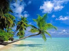 Can't wait to go to Hawaii!  Counting down....only 4 weeks till I'm on the beach!