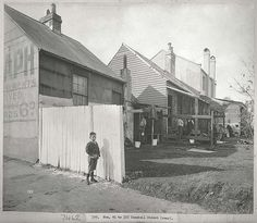 Numbers 91 to 103 Campbell Street, Sydney (rear) The Rocks Sydney, Gloucester Street, Australian Continent, Surry Hills, Largest Countries, Historical Images, City Streets, Tasmania, Vintage Photographs