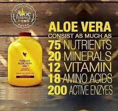 Forever Living is the world's largest grower, manufacturer and distributor of Aloe Vera. Discover Forever Living Products and learn more about becoming a forever business owner here. Forever Aloe, Aloe Vera Gel Forever, Forever Living Aloe Vera, Aloe Vera Juice Drink, Aloe Drink, Clean9, Forever Living Business, Aloe Leaf, Diet Supplements