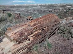Petrified Forest National Park   border=