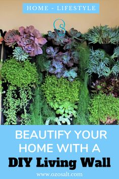 Have you tried beautifying your home with a DIY Living Wall? With Indoor plant or outdoor plants. Check this out for tips on how I did it. Plant Wall Diy, Indoor Plant Wall, Diy Wall, Succulents In Glass, Succulents Diy, Outside Plants, Outdoor Plants, Living Green Wall, Decorative Planters