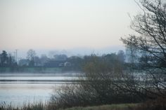 Misty morning on The Lough
