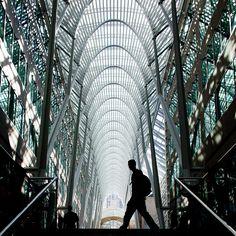 Let's Go to Manhattan by Thomas Hawk, via Flickr