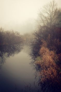 Travel + Photography >> River and fog. Beautiful World, Beautiful Places, Beautiful Pictures, Creation Image, Landscape Photography, Nature Photography, Fotografia Macro, The Great Outdoors, Mother Nature